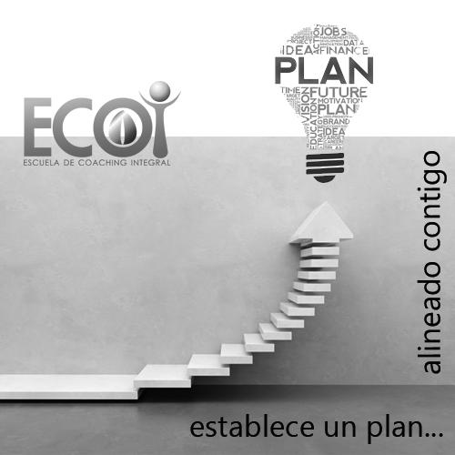 ECOI-Establece-un-Plan-blanco-y-